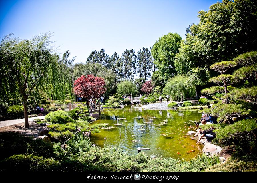 Gabriela Steve E Session Earl Burns Miller Japanese Garden Csulb Engagement Sessions