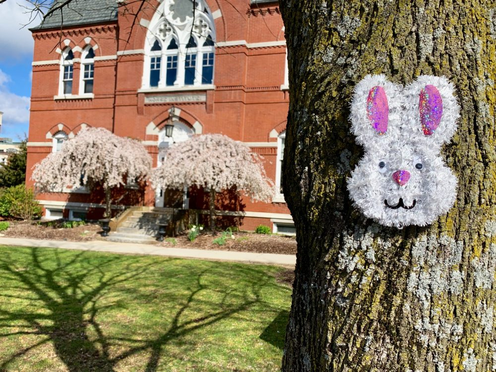 Easter Bunny, Natick