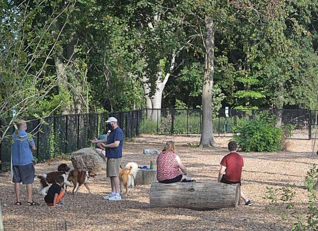 natick dog park