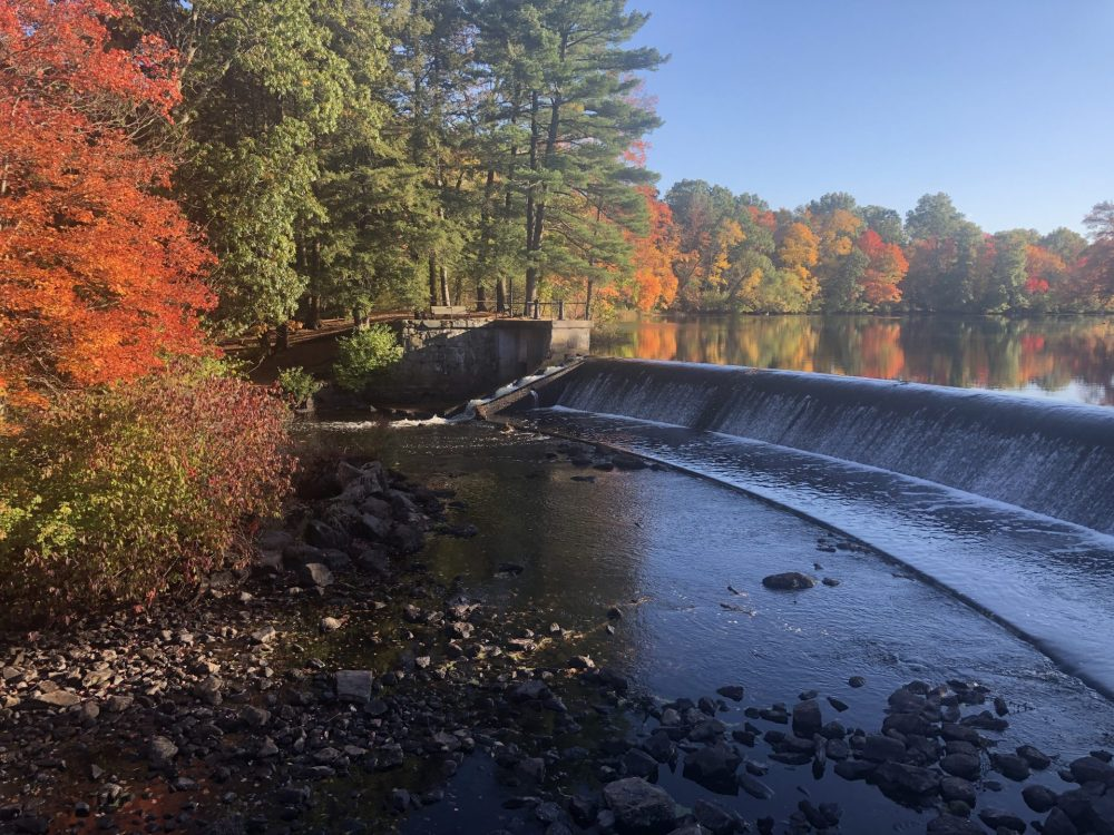 south natick dam fall
