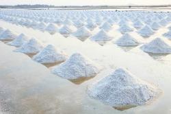 National Salt Awareness Week