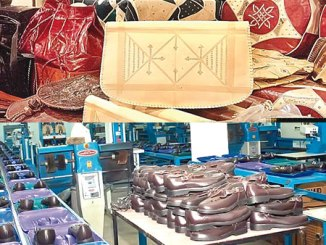 How Nigeria can generate $1billion from leather industry in 2025, By CHINYERE BASSEY