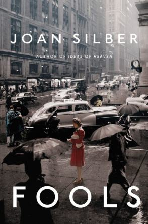 Fools by Joan Silber book cover