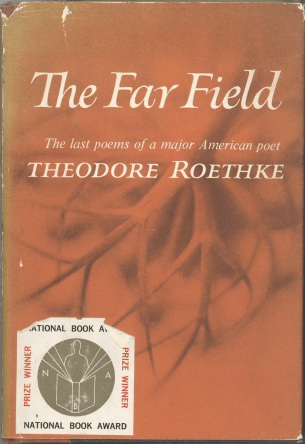 The Far Field by Theodore Roetheke book cover