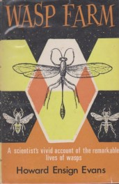 Wasp Farm Howard by Ensign Evans book cover