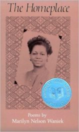 The Homeplace by Marilyn Nelson Waniek book cover