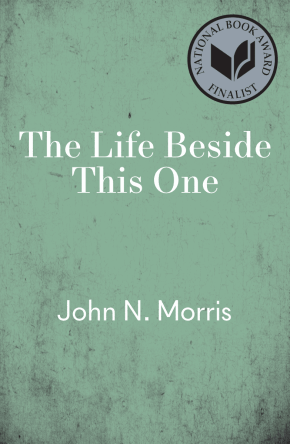 cover for The Life Beside This One by John N. Morris