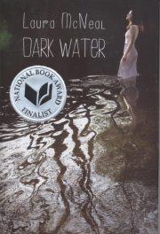 Laura McNeal's Dark Water book cover