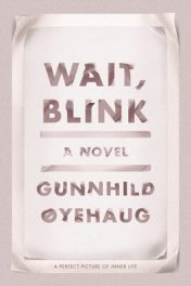 Wait, Blink: A Perfect Picture of Inner Life by Gunnhild Øyehaug book cover