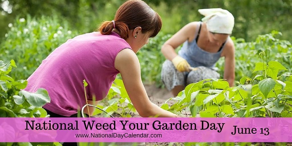 National Weed Your Garden Day June 13