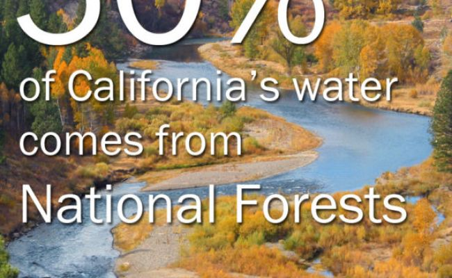 Five Facts You May Not Know About California S National