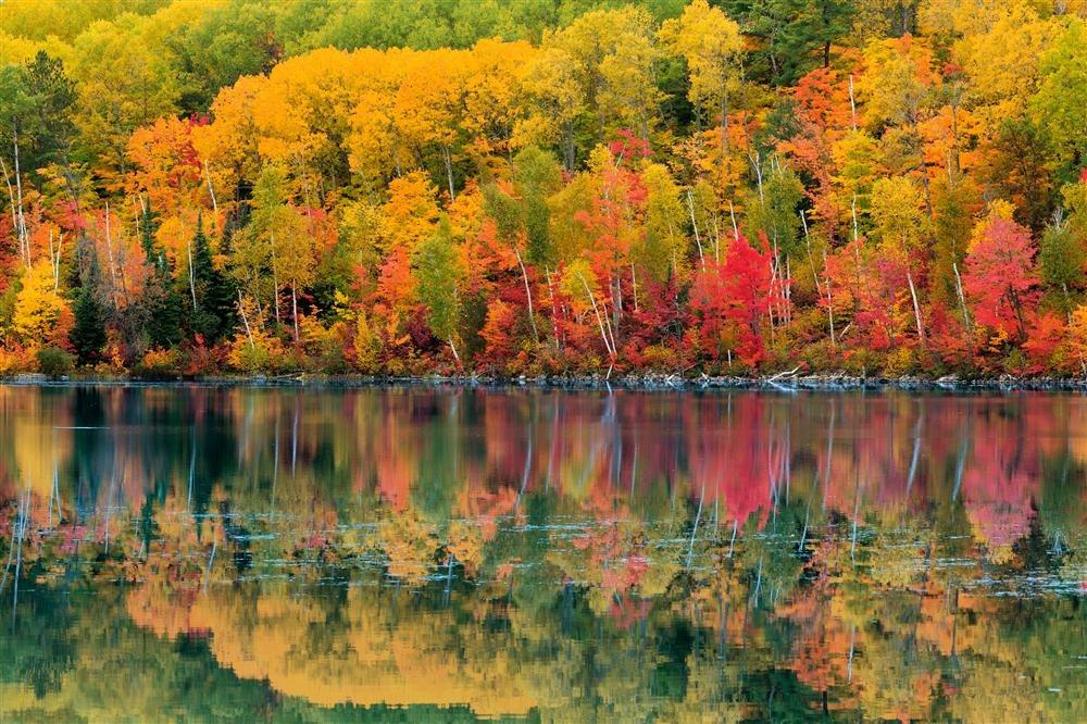 National Geographic Wallpaper Fall Foliage Los Bosques M 225 S Bellos Del Mundo