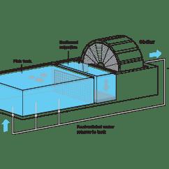 Building A Koi Pond Diagram Kenworth W900 Starter Wiring Farm