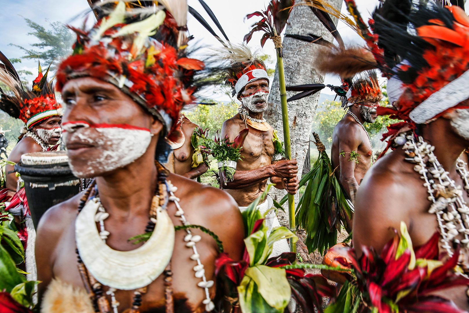 Picture of tribesman with traditional makeup, Papua New Guinea