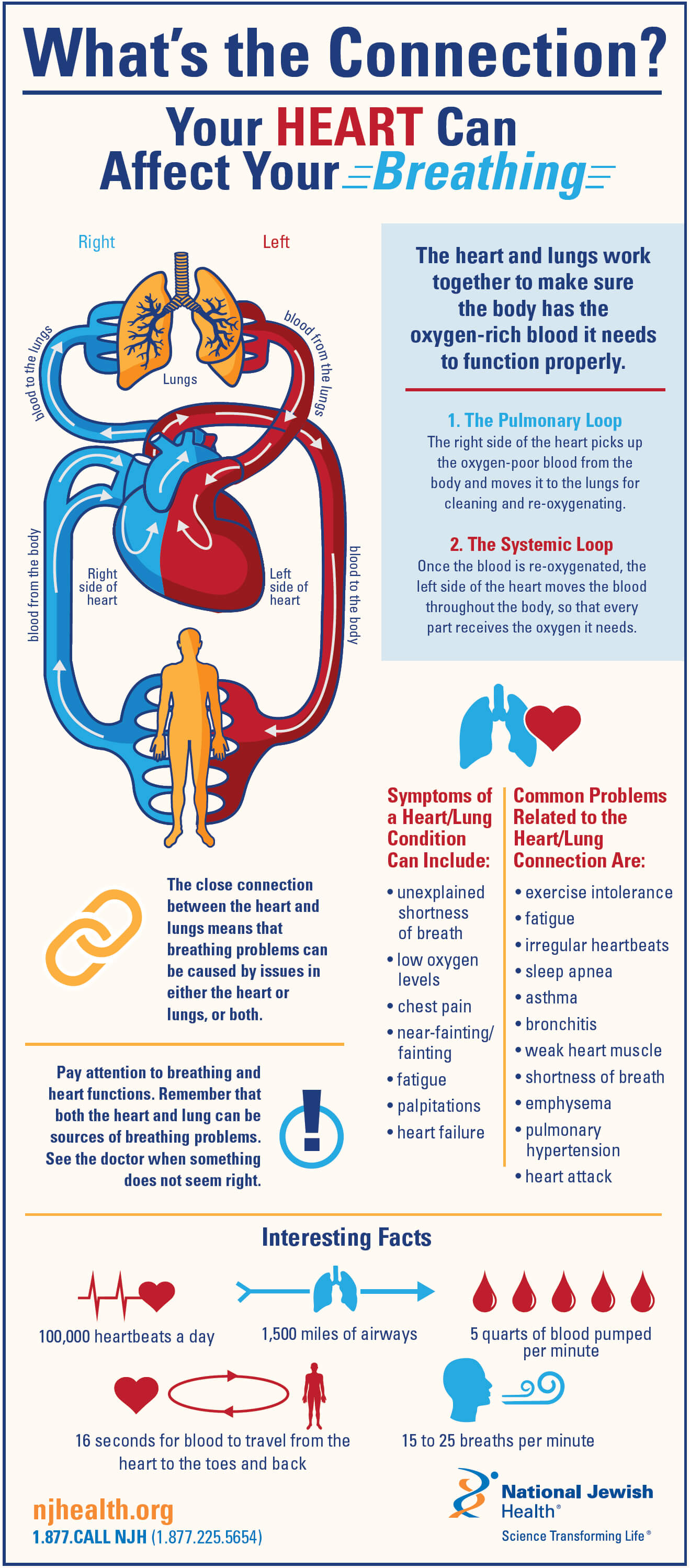 hight resolution of your heart can affect your breathing