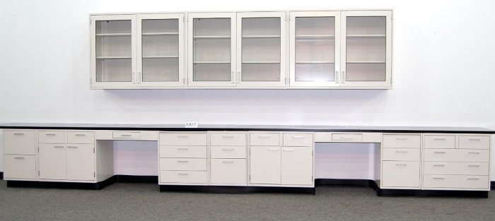 19 FISHER LAB CABINETS CASEWORK W 12 WALL UNITS  NLS