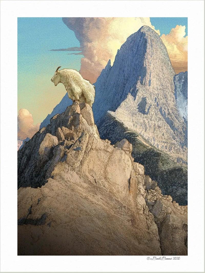Regal Mountain Goat Print
