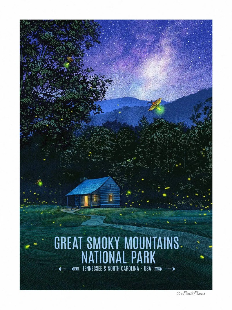 Great Smoky Mountains National Park - Fireflies at Cades Cove
