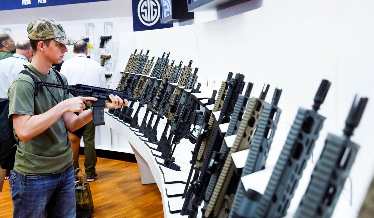 Second Amendment - The Politics of Guns - cover