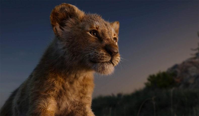 Image result for lion king live action