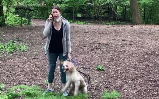 The Central Park Dog Case Is Covington 2.0