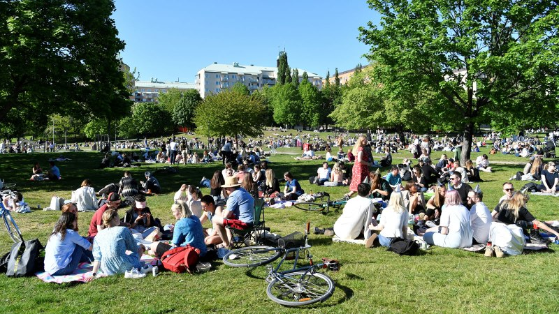 Sweden's Coronavirus Death Rate Now Ten Times Higher Than Norway's