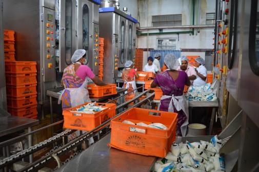 Dairy skills _ ALC India