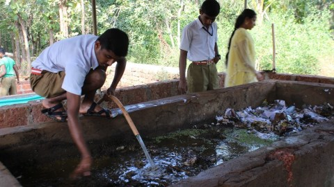 Vermiculture skill training