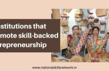 5 institutions that promote skill-backed entrepreneurship