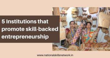 5 institutions that promote skill-backed entrepreneurship