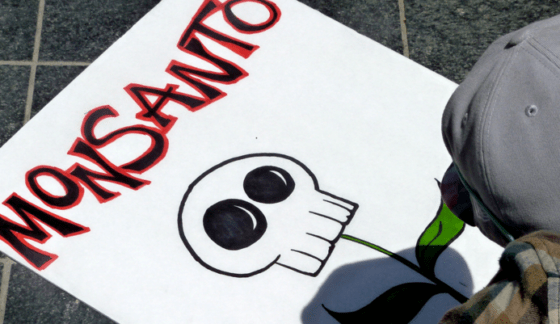 Damning Evidence: Revealed Documents Prove That Monsanto Deliberately Sold Banned Chemicals for Years Despite Knowing Their Health Risks