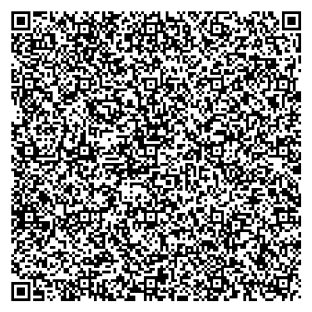 QR Code Generated For Example