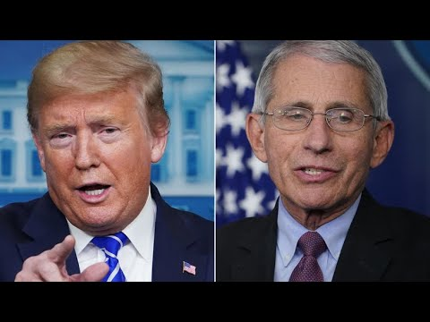 Dems are Turning on Fauci and Supporting Trump and Rand Paul as Washington Post Reporter Tells Truth