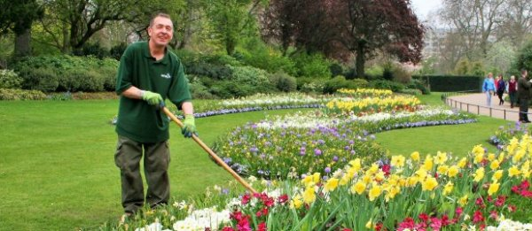 maintenance landscape gardener