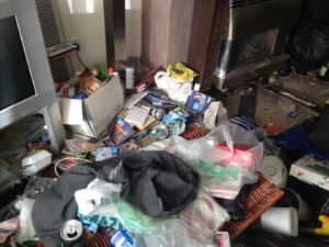 Newcastle Verminous & Cluttered House Clearance