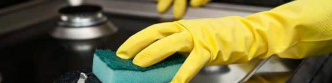 Property Cleaning Service