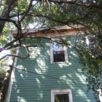 Trees Against House Savannah Georgia