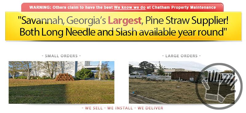 Pine Straw Sales