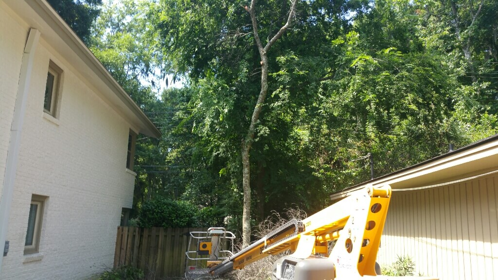 Shadow Box Fence Installation Chatham Property Maintenance