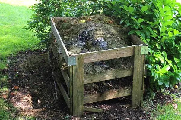 Orto e compostaggio: un modo per reintegrare la sostanza organica