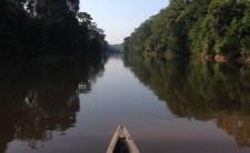 Sur le rio Napo