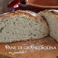 Pane di grano Solina senza impasto in pentola