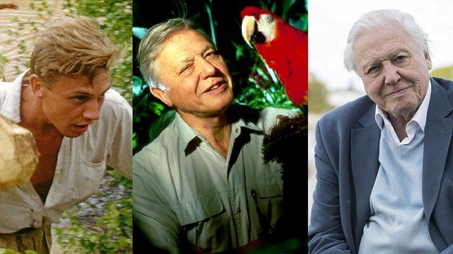 Travel TV: Planet Earth 2 David Attenborough