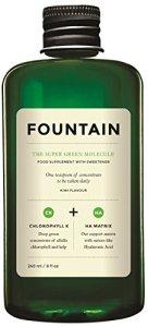 Fountain 03 – The Super Green Molecule 240ml