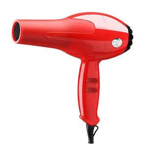 FZHZZ SèChe-Cheveux Professionnel 1600W Rouge/Noir Beauté Salon Accessoire Ventilateur Cheveux 220V,Red