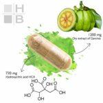 GARCINIA CAMBOGIA extra fort | 1200 mg | 720 mg HCA | 120 capsules | brûle les graisses | accélère le métabolisme des lipides | équilibre du poids | produit italien