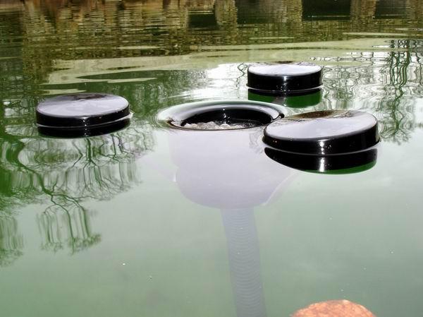 Teich skimmer  Schwimmbadtechnik