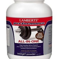 Lamberts-All-In-One-Chocolate-Flavour-Sports-Shake-1450g
