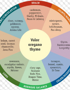 Body systems oil wheel chart also free essential downloads rh natural aromatherapy benefits