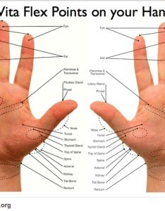 Vitaflexhandchartg also vita flex rh natural aromatherapy benefits